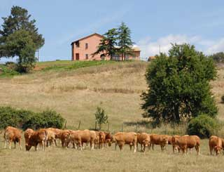 Agriturismo Lago di Mezzano